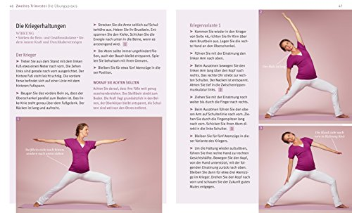 Yoga-in-der-Schwangerschaft-DVD-GU-Multimedia-P-F-0-3