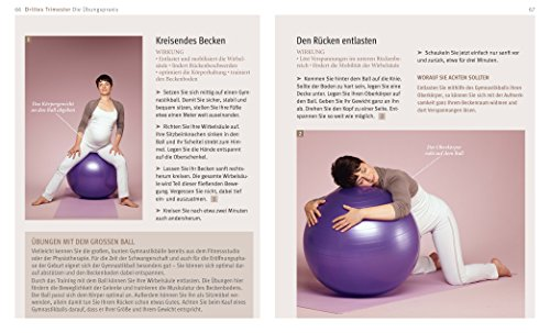 Yoga-in-der-Schwangerschaft-DVD-GU-Multimedia-P-F-0-4